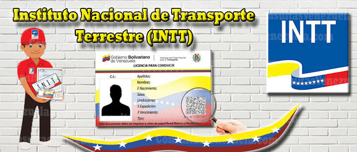 INTT: Citas, Consulta en línea, Licencias, Planilla única de Trámite y más.