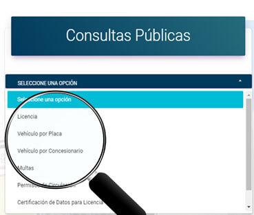 Consultas públicas en el INTT: Como consultar Multas y Licencias