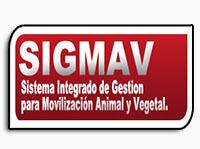 ¿Qué es el SIGMAV?