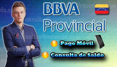 Banco Provincial: Requisitos, Apertura de cuenta, Consulta de Saldo y Pago Móvil Provinet