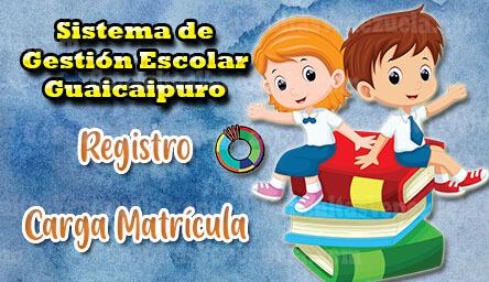 Sistema de Gestión Escolar Guaicaipuro: Registro y Carga de Matrícula
