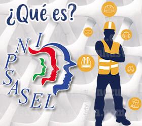 ¿Qué es Inpsasel y sus Funciones en Venezuela?